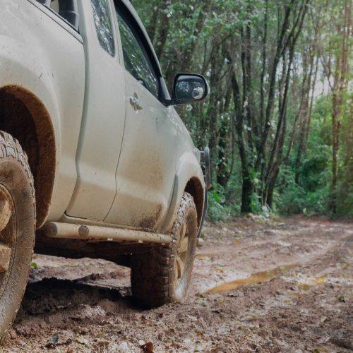 Diesel & 4WD